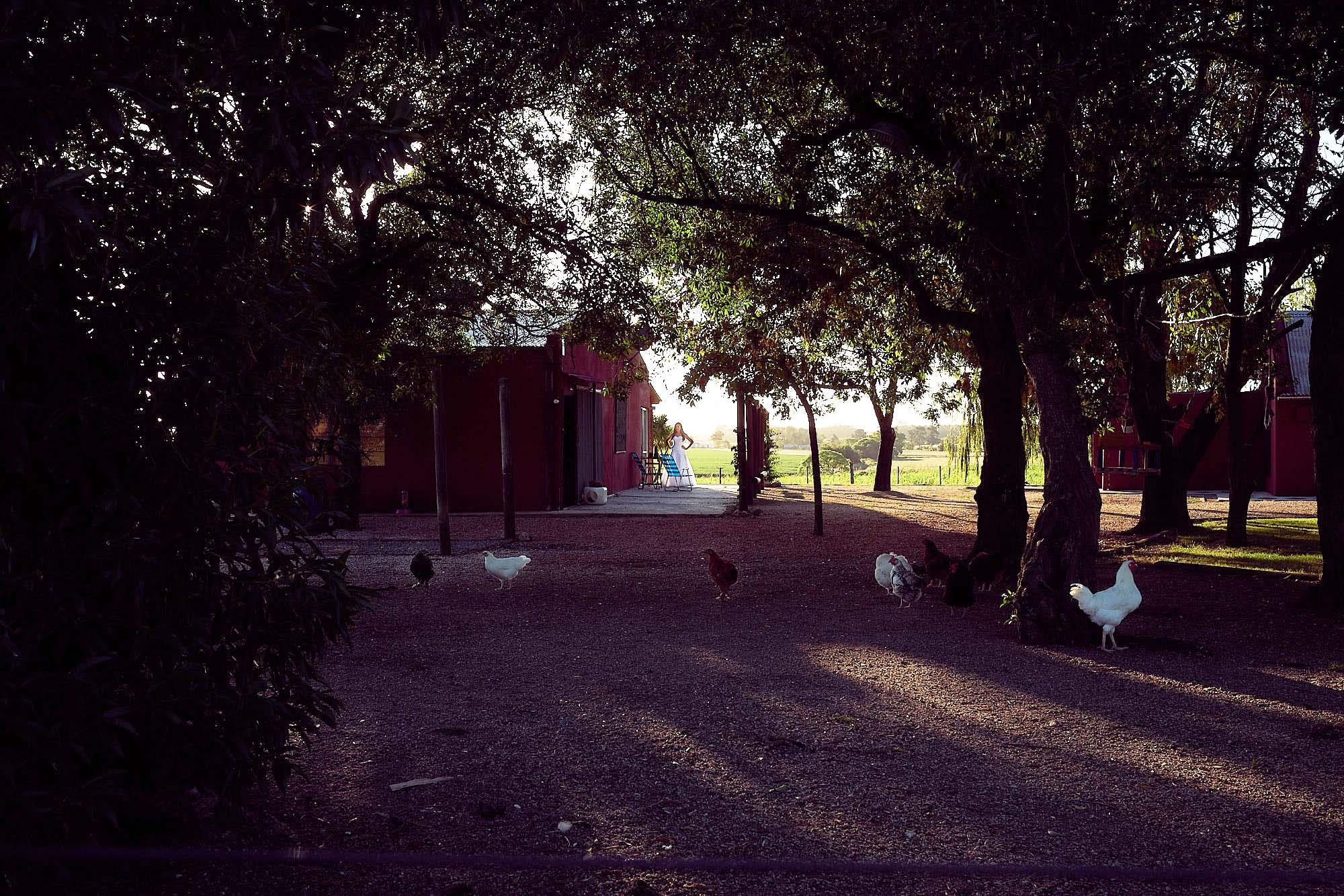 post boda en el campo - uruguay - www.fabriziomaulella.com