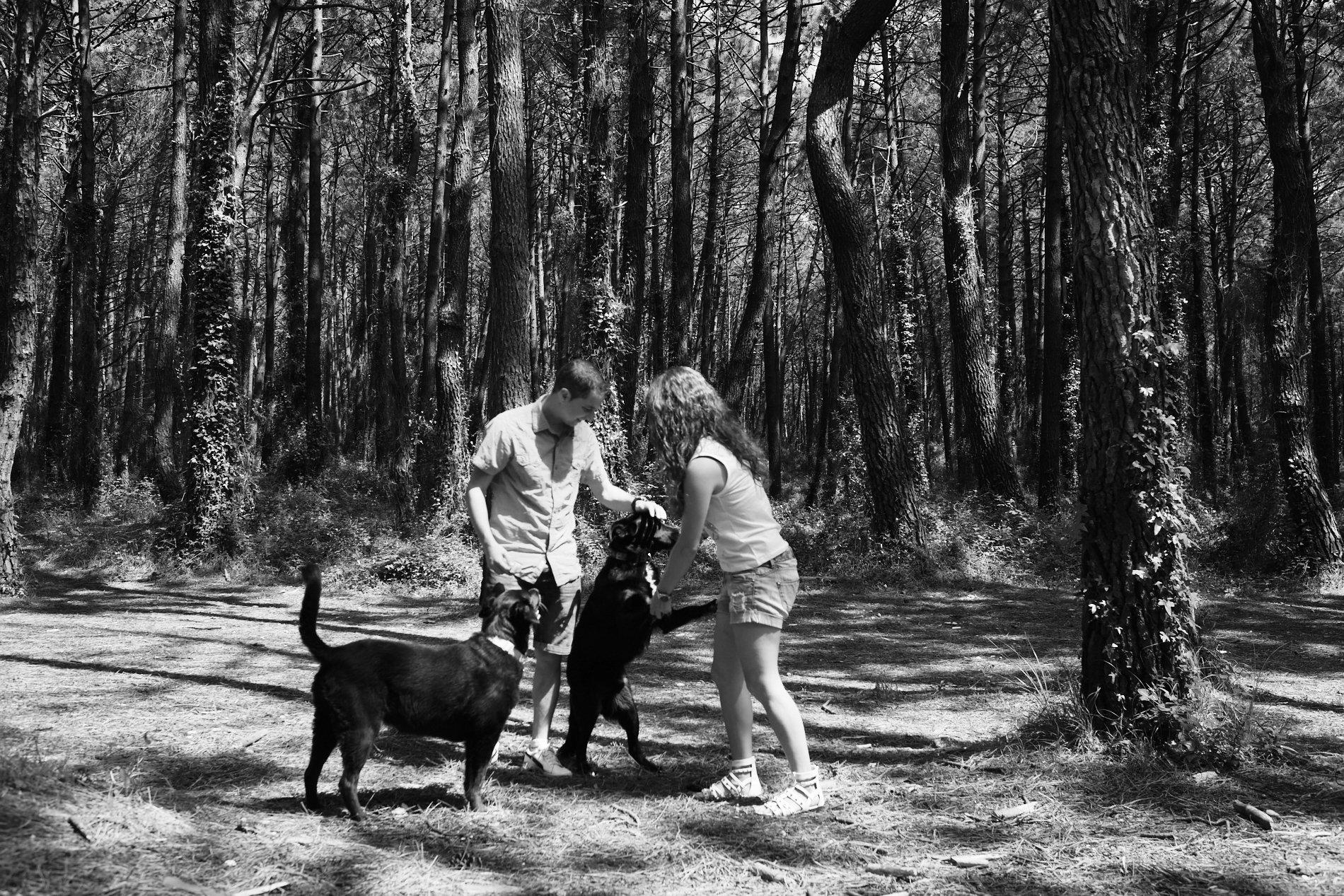 reunion familias con perros