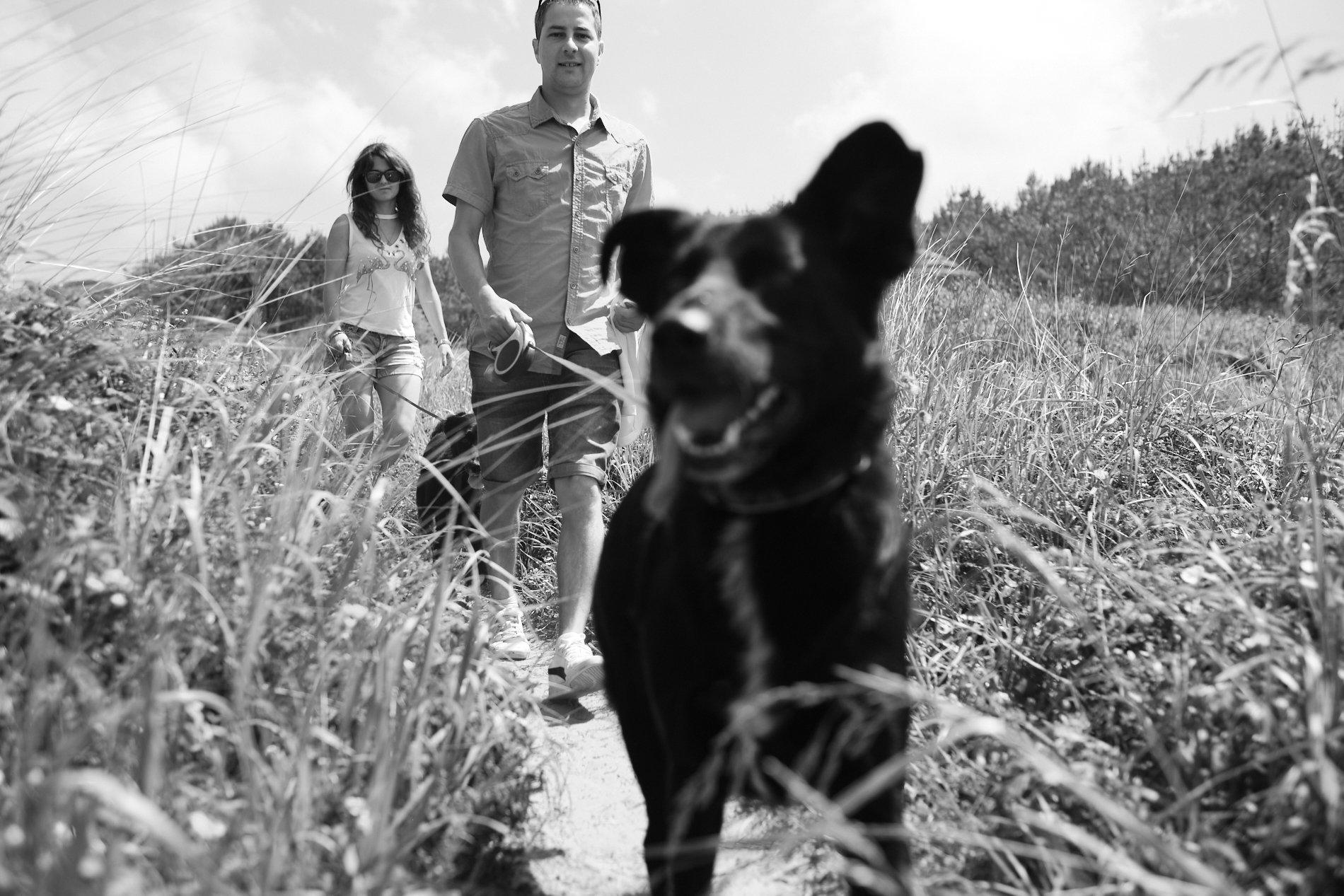 fotografo de mascotas