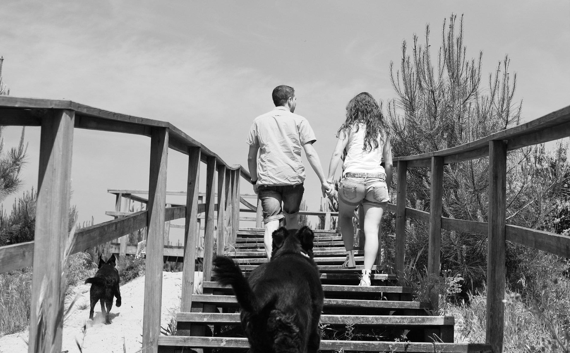 fotos de pareja con perros en la playa