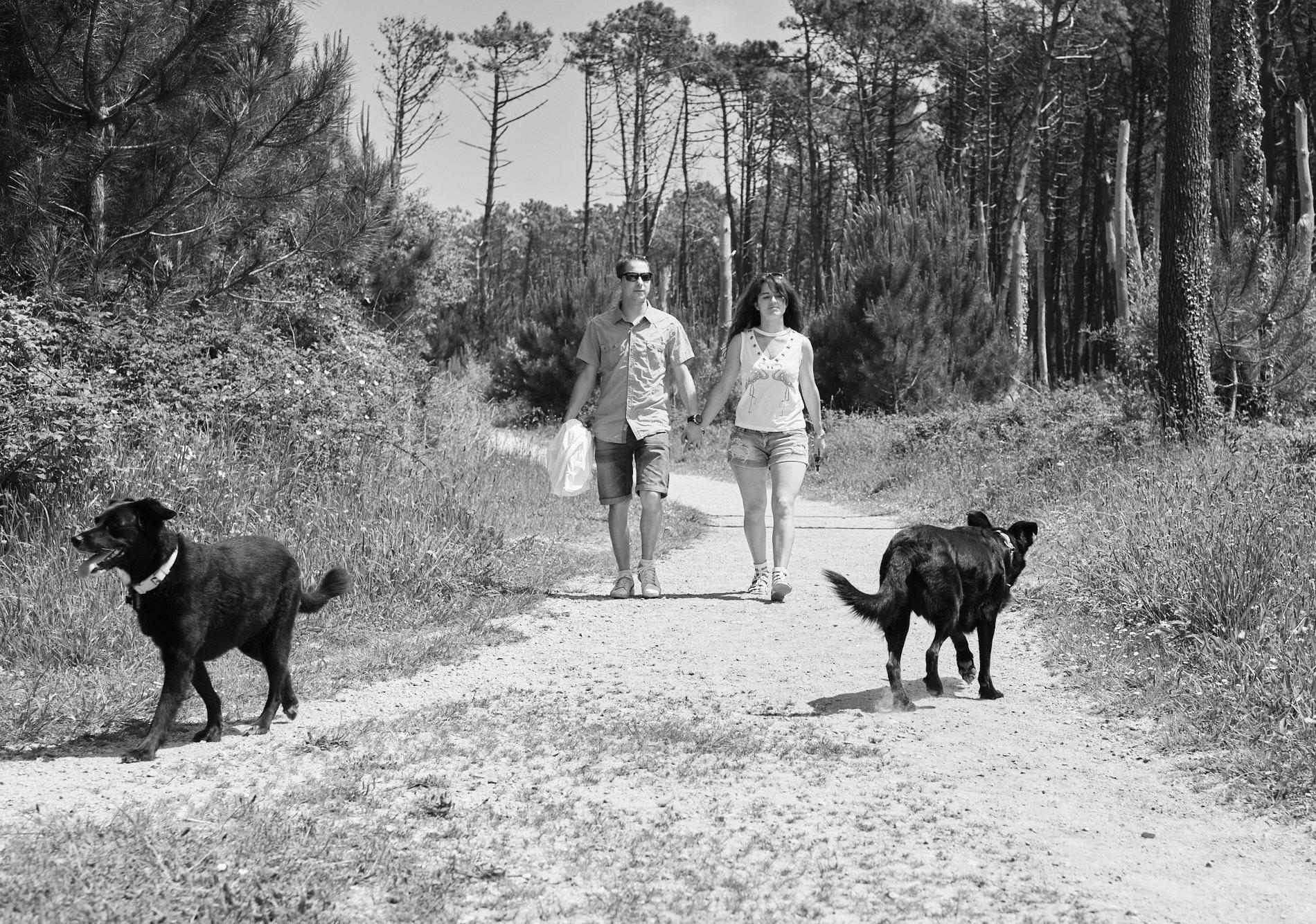 eportaje de familia con perros fotógrafo de perros